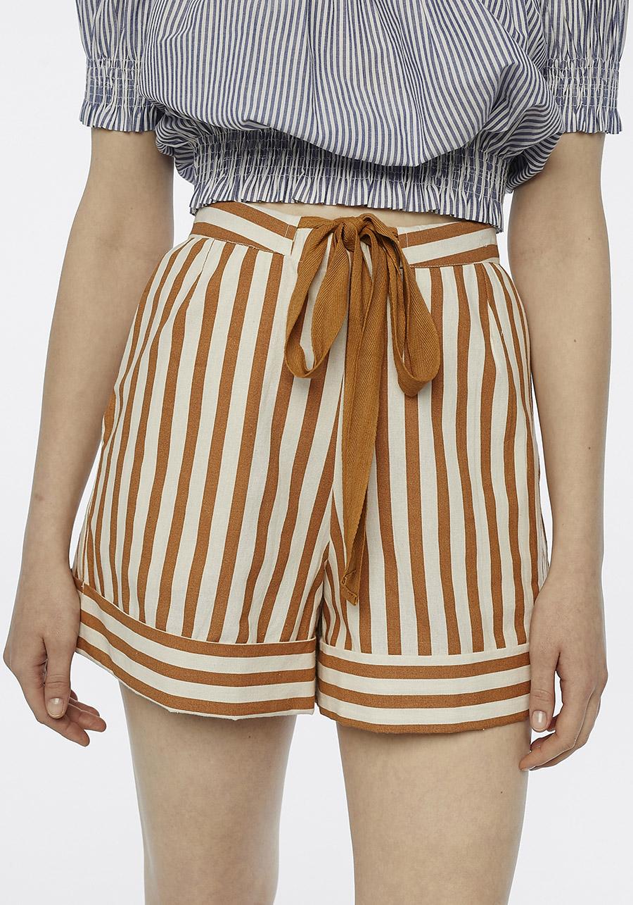 Brown Striped Mini Shorts Compania Fantastica